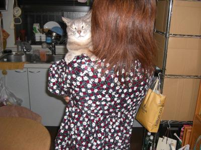 お母さん、抱っこ!