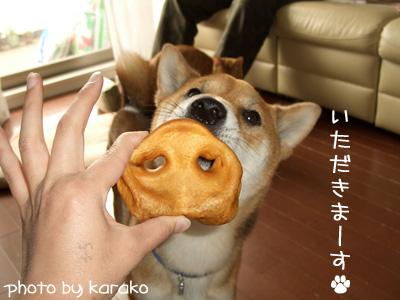 お鼻ガブー