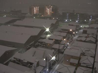 大雪になれー♪