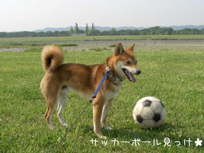 サッカーボールだっ