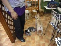 2009-5-3hotel7.jpg