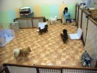 2009-5-4hotel2.jpg