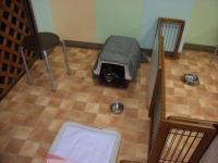 2009-5-5hotel3.jpg