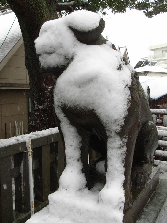080203雪と狛犬@八幡神社2