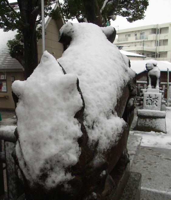 080203雪と狛犬@八幡神社3
