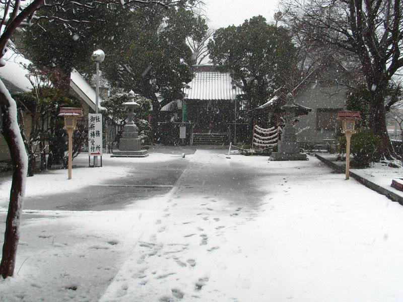 080203雪と狛犬@八幡神社4