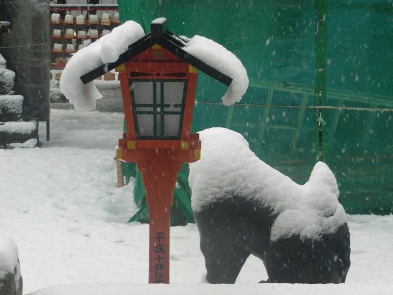 080203雪と紅梅@天神社6