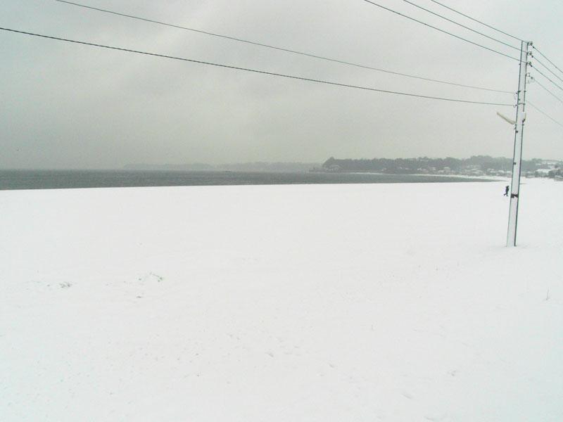 080201雪の三浦海岸1