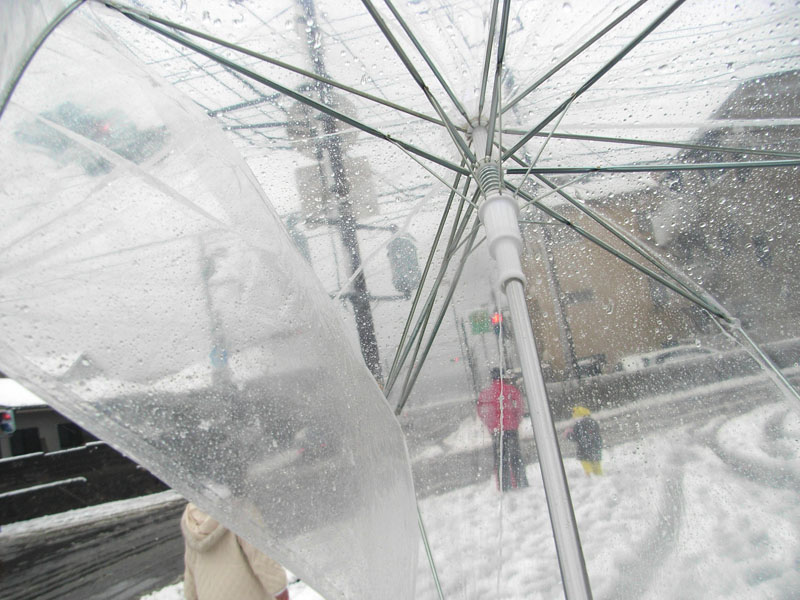 080201雪の三浦海岸骨折