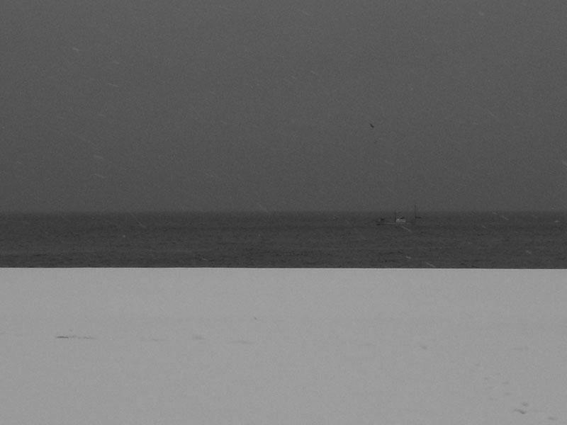 080201雪の三浦海岸G