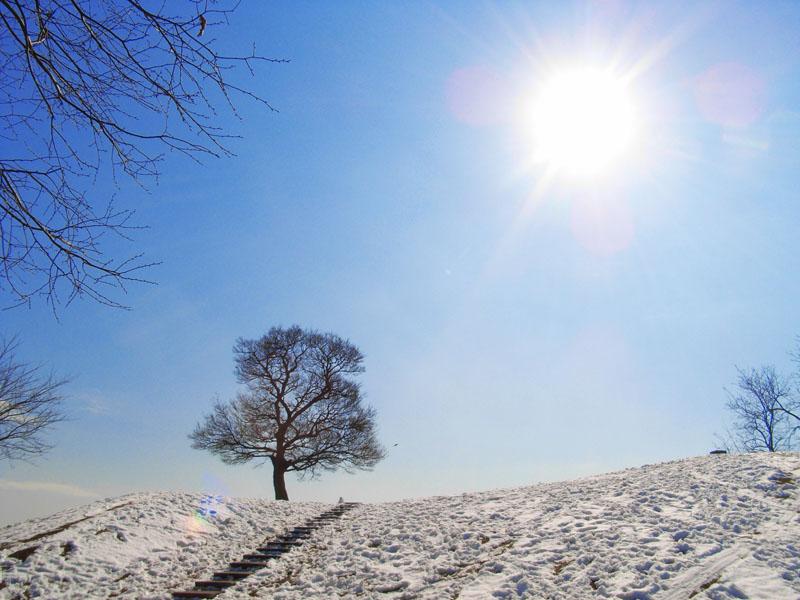 080204雪の榎の丘1