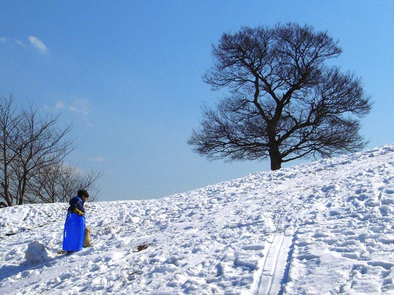 080204雪の榎の丘2