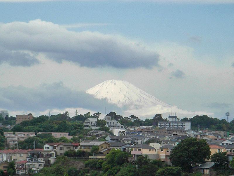 080520嵐カナヘビ富士夕焼け3