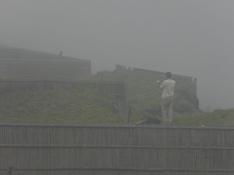 080713霧の平塚海岸2