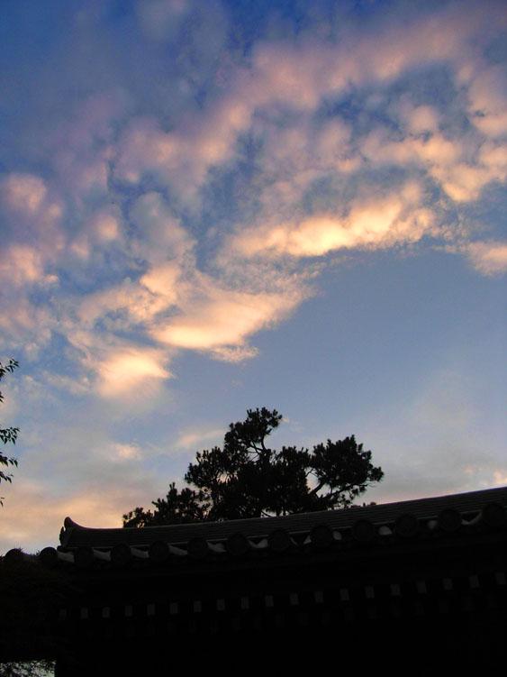 080712梅雨明け3