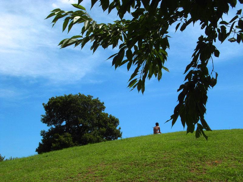 榎の丘の夏2