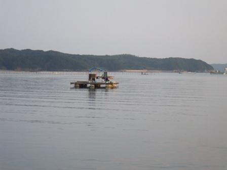 隣の筏と風景