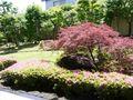 素敵なお庭