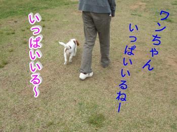 himawari10_convert_20090506000135.jpg