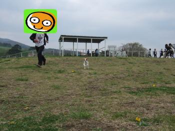 himawari15_convert_20090506004019.jpg