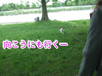 himawari53_convert_20090516221036.jpg