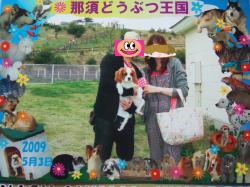 himawari7_convert_20090505120007.jpg