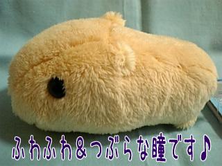 20061203174801.jpg
