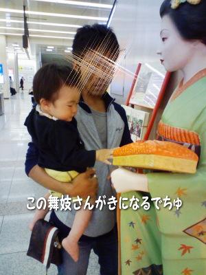 yasaka2.jpg