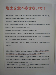 IMG_2689_1.jpg