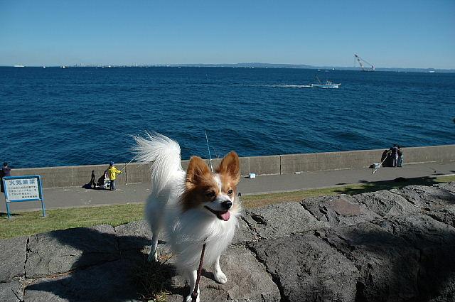 海だぁ~~~(^◇^)