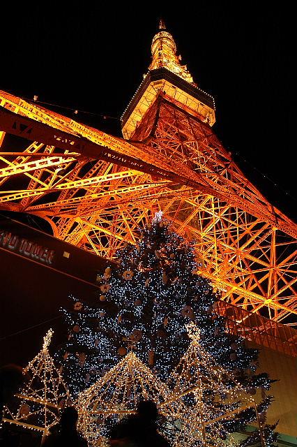 やっぱり高い東京タワー。。。