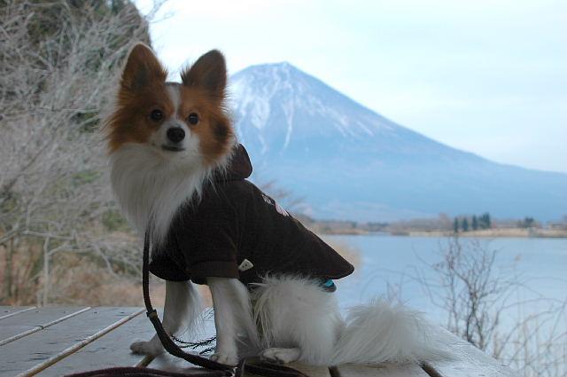 富士山とボク