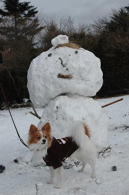 雪だるまさんと