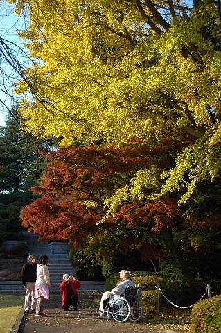 秋晴れの日に