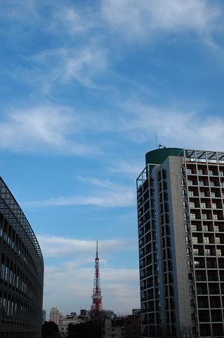 東京タワーの上にも青空が