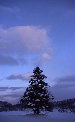 夜が明けて綺麗な青空が