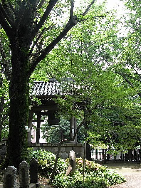 緑に囲まれた鐘突き堂