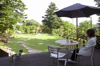 garden_pic003.jpg