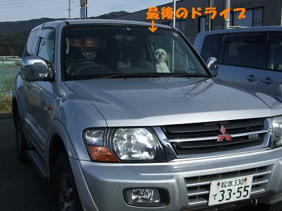 2008_030610018.jpg