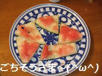 2008_062010005.jpg
