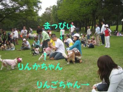 0IMG_5235.jpg