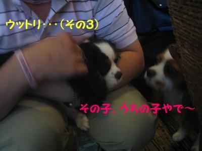 0IMG_6269.jpg