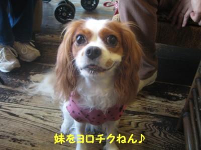 0IMG_6280.jpg