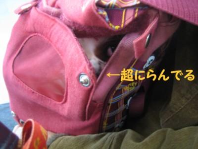 20050123201631.jpg