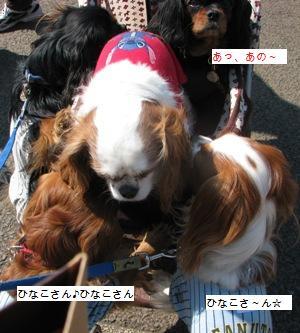 3IMG_2122.jpg