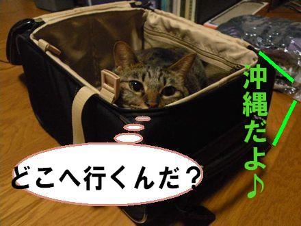 旅行①10.21
