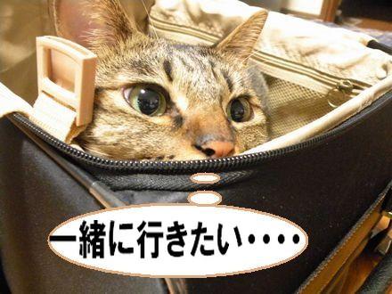 旅行③10.21