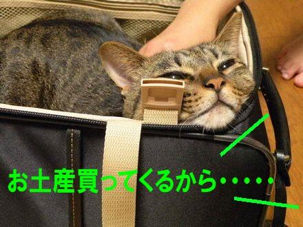 旅行④10.21