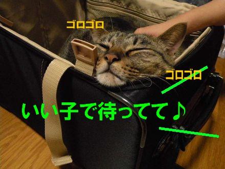 旅行⑤10.21