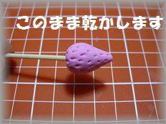 conv0009_20090818173234.jpg